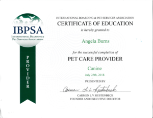 IBPSA Certificate to Angela Burns